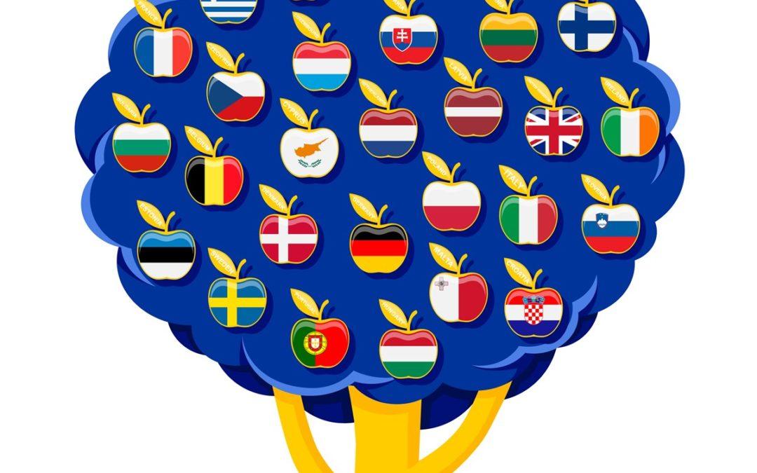 Tirocini alla Commissione Europea